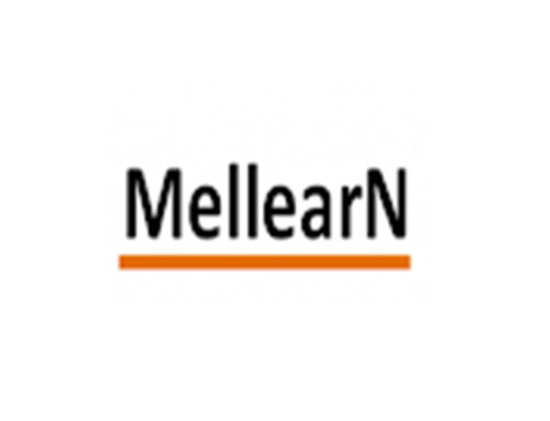 Attending the MELLearN annual conference